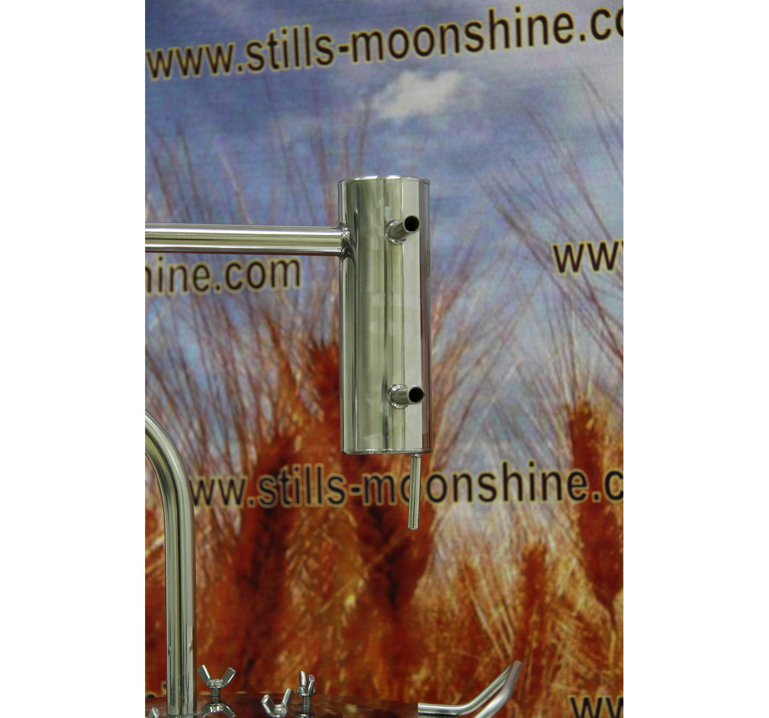 Moonshine distiller owner with fruits
